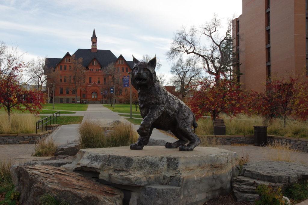 Fall at Montana State University
