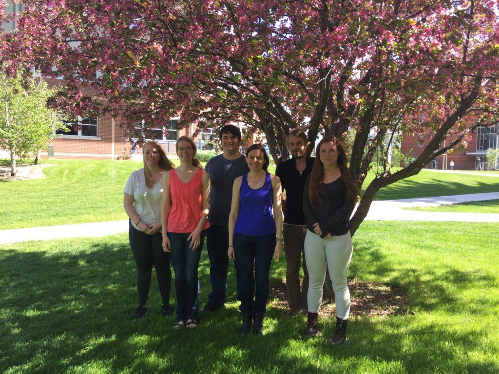 Spring at Montana State University!